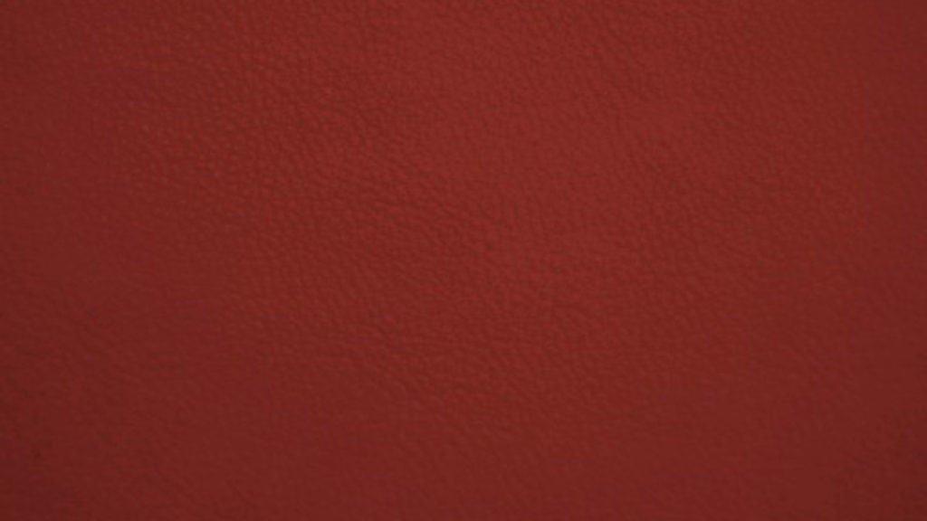 Dos Santos leather on Brigade Mondaine
